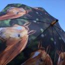 Regenschirm - Stockschirm - Pferd - Pferde Bauernhoftiere...