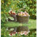 Outdoor Textilposter Äpfel Garten Poster aus Stoff...