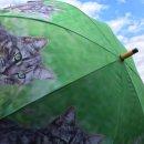 Regenschirm - Stockschirm - getigertes Kätzchen...